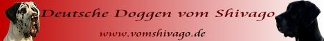 banner of the great danes breedingvom Shivago